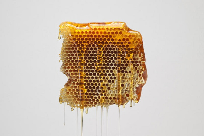 Bee Honeycomb - is honey vegan?