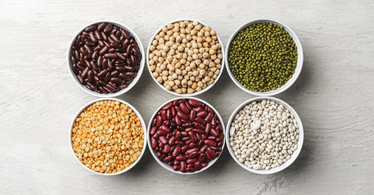 Vegan Protein: Nuts, Beans, Meat Substitutes and More